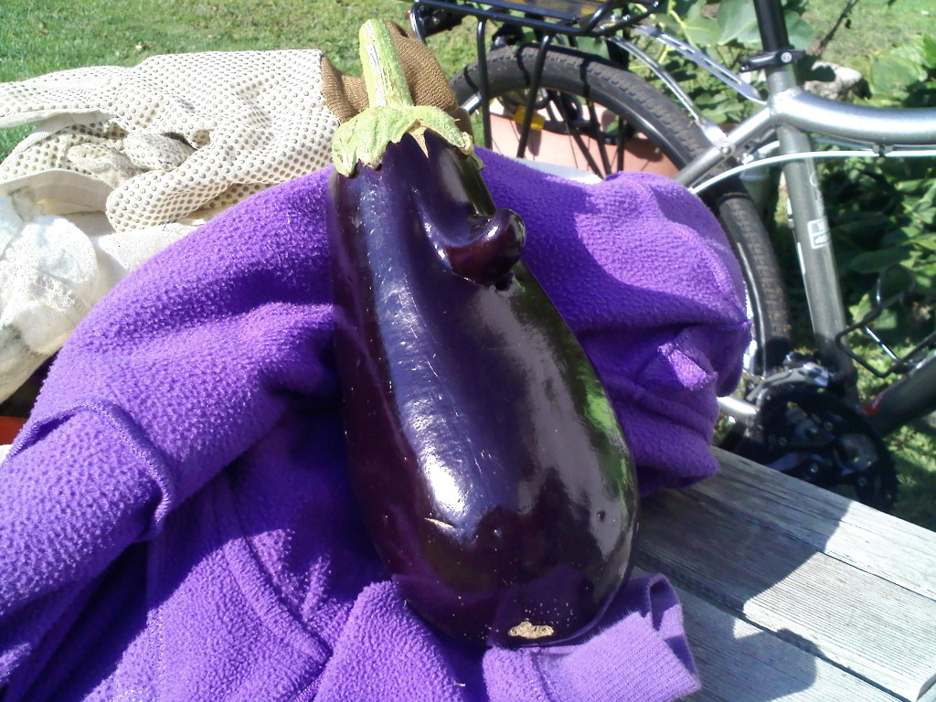 Eggplant with a nose