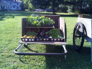 Double Decker Cart