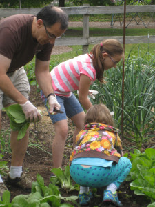 2015_06_06 001 Dad helping