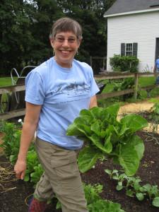 2015_07_18 harvesting lettuce